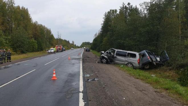 В Лужском районе Ленобласти при столкновении трех микроавтобусов погибли два человека