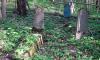 Изнасиловал и задушил: Под Владимиром найдены тела пропавшей 16-летней матери и ее подруги