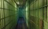 Голодающие уральские заключенные голодают и требуют гарем