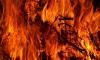 В центре Петербурга эвакуировали 50 человек из-за пожара повышенного номера сложности