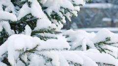 Синоптик рассказал, когда стоит ждать потепления в Петербурге