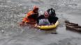 В Приозерске прохожий спас провалившегося под лед ...