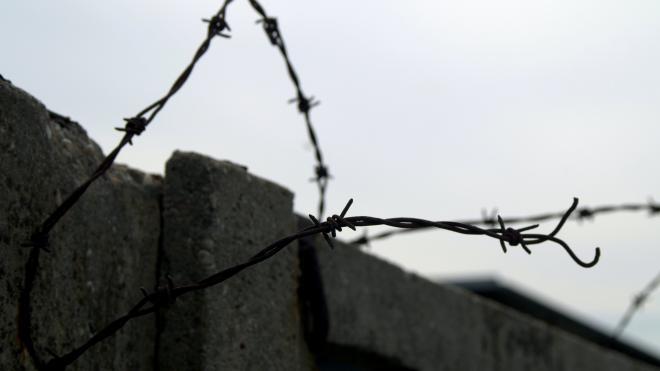Вора-беглеца вернут в колонию строгого режима еще на полтора года