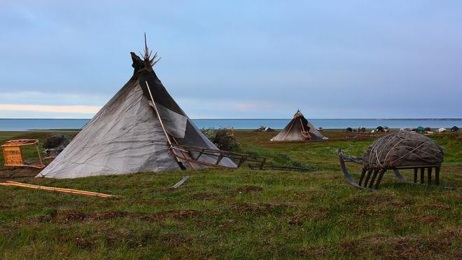 На Ямале нашлись мальчики, которые пропадали в тундре за полярным кругом два дня