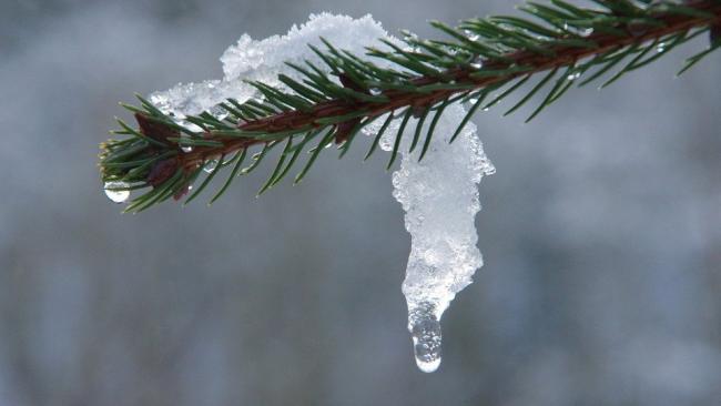 Четверг в Петербурге начнется с потепления