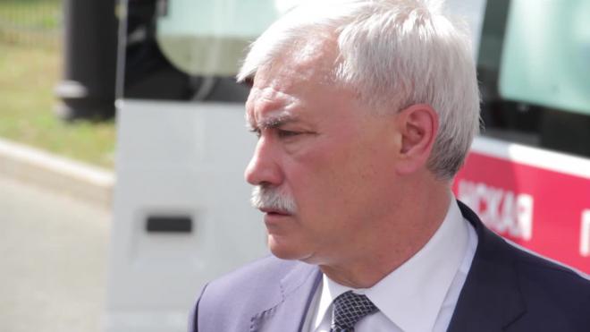 Полтавченко рассказал об особенностях строительства Серного моста в Петербурге