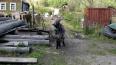 Головы пропавших коз нашли Карьере-Мяглово