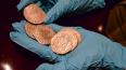 Дайверы нашли золото с затонувшего галеона. Стоимость ...