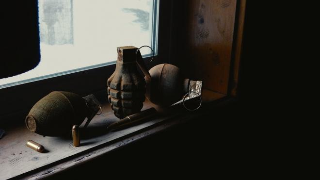Житель Колпина хранил дома арсенал боеприпасов и взрывчатки