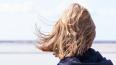 В понедельник в Ленобласти ожидается сильный ветер ...