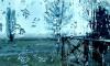"""""""Водоканал"""" готовится к возможным подтоплениям в Петербурге из-за сильных дождей"""