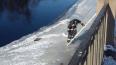 Вмерзшая чайка в лёд, была спасена сотрудниками МЧС