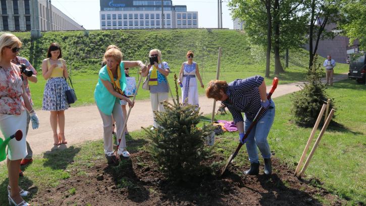 """В Международный день семей в сквере на Рощинской улице """"Женщины года"""" высадили деревья"""