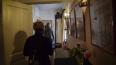 Петербургский музей уличили в длительном нарушении ...