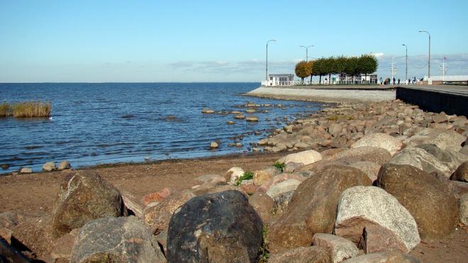 На Финский залив незаконно сливали отходы