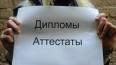 СК РФ: многие российские пилоты имеют липовые дипломы