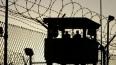 Петербуржцы боятся, что 4 тысячи амнистированных зеков п...