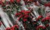 """Горожане возложили цветы у стен Петропавловской крепости в память о жертвах """"красного террора"""""""