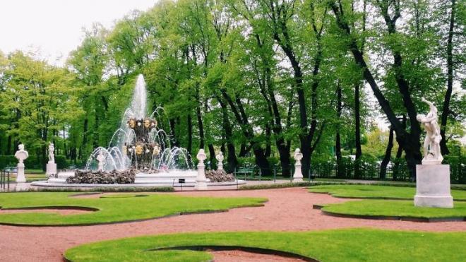 Петербуржцев перестали штрафовать за прогулки в парках