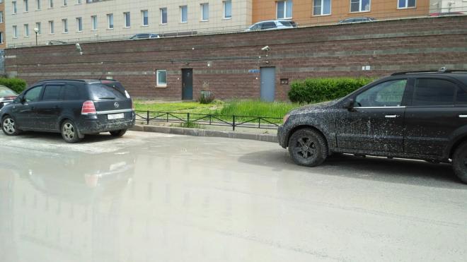 На Парашютной машины заливает похожая на цементный раствор жидкость