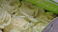 В Петербург к 8 марта привели 734 тонны цветов