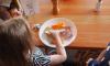 Качественное питание детей признали общероссийской проблемой