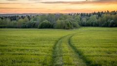 Forbes составил рейтинг самых экологичных компаний России