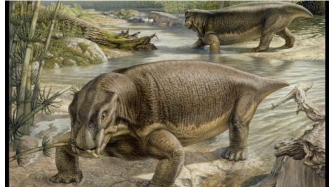 В Италии найден скелет мезозавра