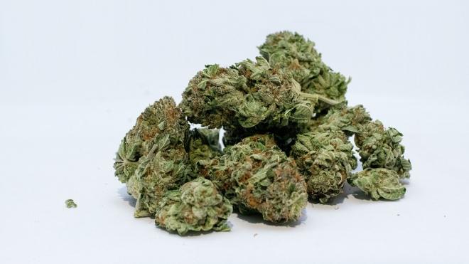 У Петербуржца нашли более 100 граммов наркотиков