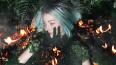 Блогер Елена Шейдлина создала фотопроект на тему лесных ...