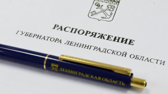 В Петербурге и Ленобласти предлагают уравнять социальные льготы