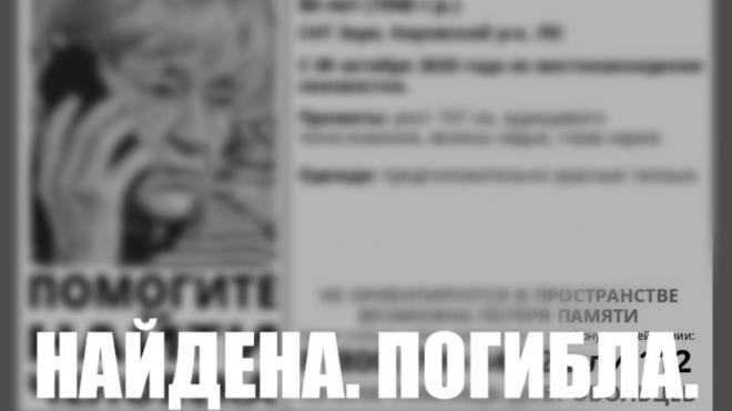 Пропавшую в Ленобласти пенсионерку нашли мертвой в канаве