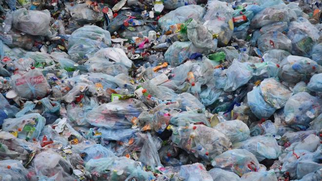 """""""Зеленый Фронт"""" проверяет законность завоза мусора на МПБО-2 в Янино"""