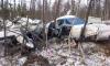 Появились первые фото разбившегося самолета под Хабаровском