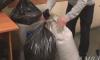 Житель Омска хранил в гараже 30 кг марихуаны