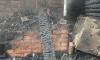 В Ленинградской области пожар унес жизни двух женщин и ребенка
