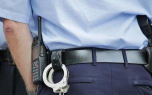 В Петербурге ищут телефонного совратителя 9-летней школьницы