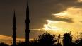 Саудовская Аравия и Турция готовятся к наземной операции ...
