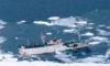 Экипаж судна «Ирина» эвакуирован на «Татарстан»