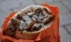 Столовая ЗакСа подыскивает мясо для шавермы и лососевую икру