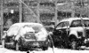 Вице-губернатор Санкт-Петербурга предложил парковаться как в Швеции