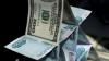 "МВД ликвидировало крупную финансовую пирамиду ""Витязи"""
