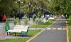 В Сосновом Бору создадут зеленую прогулочную зону