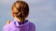 В Ленобласти сосед по коммуналке изнасиловал 10-летнюю ...