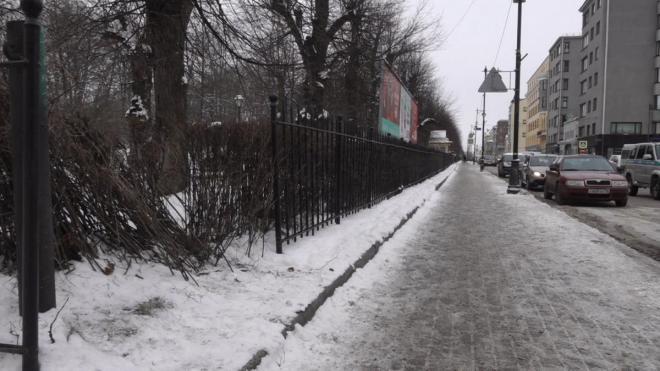 Администрация Выборгского района ищет водителя, повредившего ограждение в парке Ленина