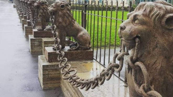 Среди 29 львов с дачи Кушелева-Безбородко нашли поддельного