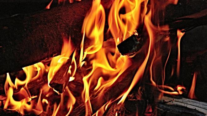 Парень из Всеволожска спас из горящего дома свою соседку