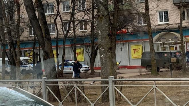 Пожилую женщину сбили насмерть на тротуаре в Тосно