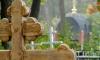 Массовое захоронение младенцев на ставропольском кладбище напугало горожан