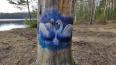 Неизвестный художник расписал деревья в Шуваловском ...